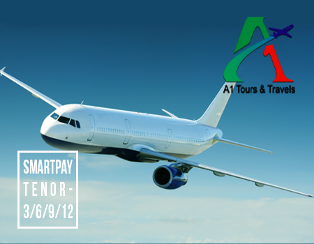 A1 Tours & Travels